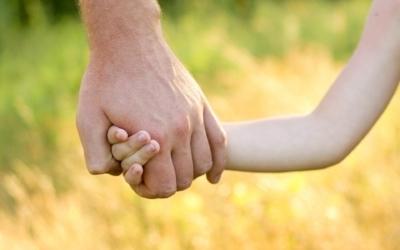 Доверенность забирать ребенка из сада: образец.