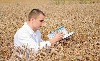 Молодой специалист на селе: программа, условия, регионы.